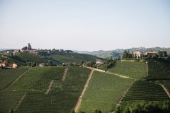 1.Langhe Monferrato Piemonte